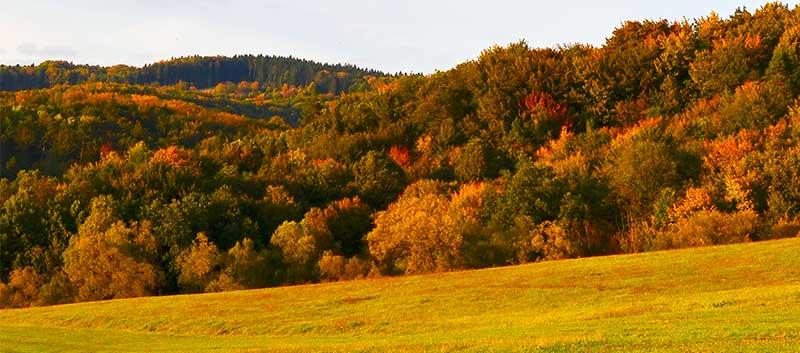 Nádherná jeseň