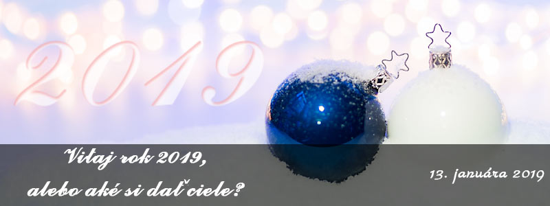 Rok 2019